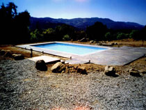 Image of an In-ground Fiberglass Pool Installation by Elite Pool Builders in Toronto
