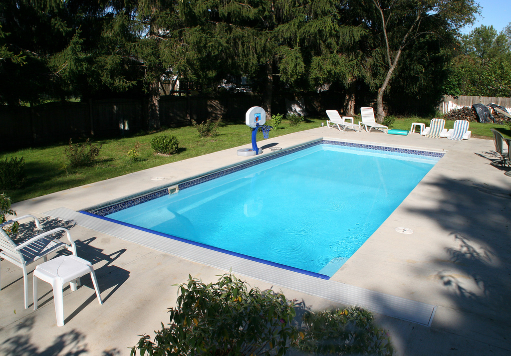 Image of In-ground Fiberglass Pool with Accessories in Backyard in Ontario